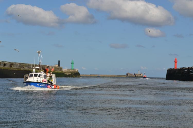 Port BoulogneSurMer Garde Le Cap  Terres Et Territoires