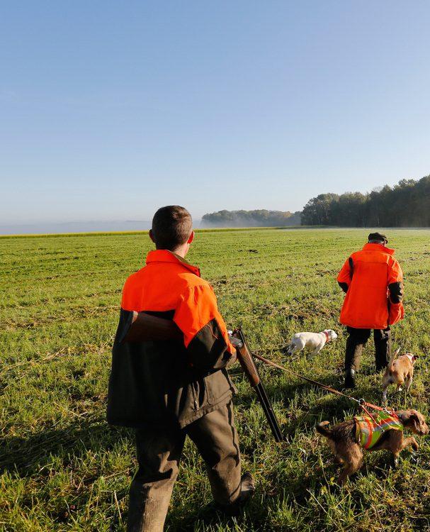 chasse, permis de chasser, examen