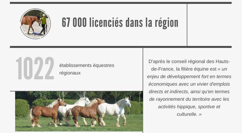 infographie filière cheval Hauts de France terres et territoires
