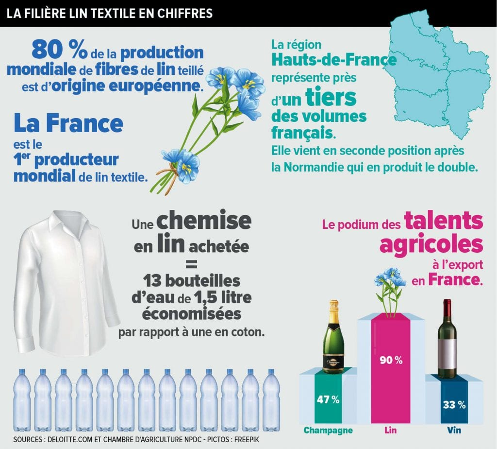 infographie lin